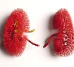 Selhání ledvin upsa