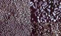 Aktivní uhlí na detoxikaci