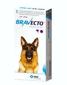 kolagenové injekce pro psy